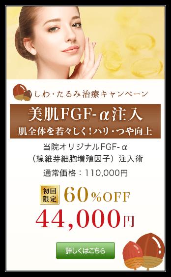 しわ・たるみ治療キャンペーン 美肌FGF-α注入 肌全体を若々しくハリ・ツヤ向上