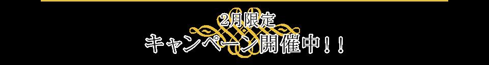 2月限定キャンペーン開催中!!